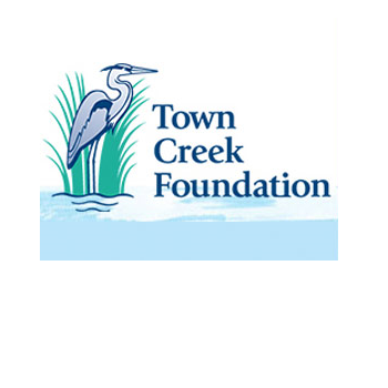 Town Creek Foundation